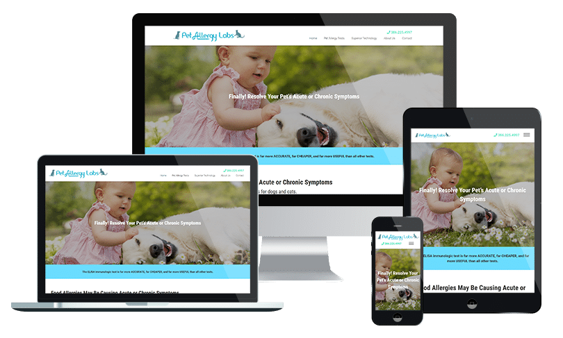 Veterinarian website design company Jacksonville Florida - startup web design
